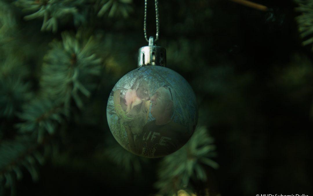 Ordinace o Vánočních svátcích